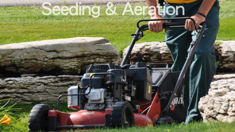 seeding-and-aeration