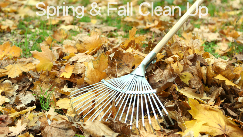 spring-and-fall-clean-up
